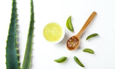 Aloe vera : 5 bienfaits insoupçonnés à découvrir